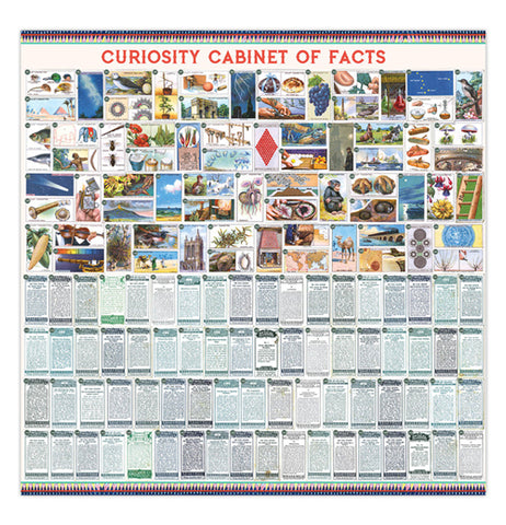 its and informational poster with pictures from the puzzle and the facts below them that match up with the pictures.