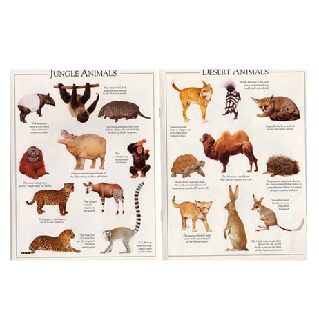 two pages of the sticker book featuring animals of the desert and jungle