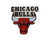 Chicago Bulls Pin