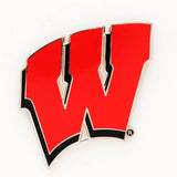 Wisconsin Badgers Pin