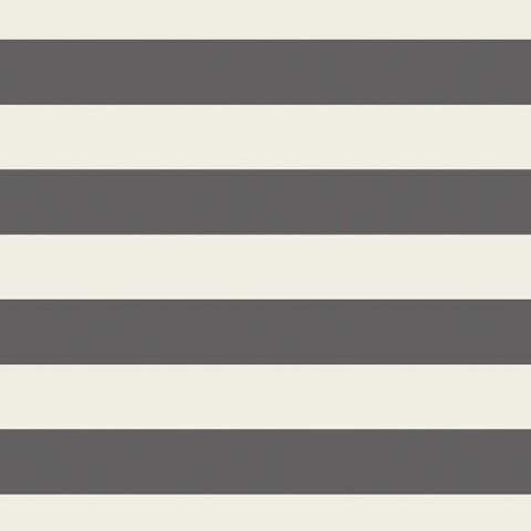 Striped Bold Graphite Jersey Knit