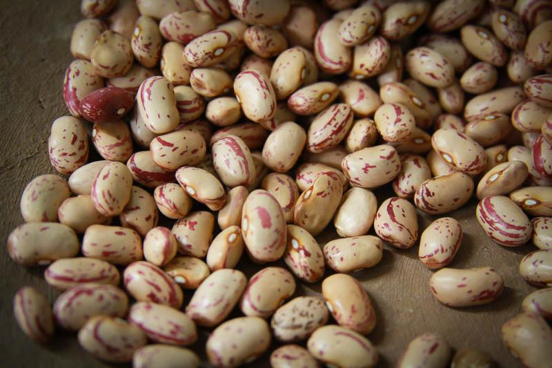 Cranberry Beans with Garam Masala