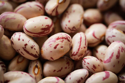 Rancho Gordo Dried Heirloom Cranberry Beans