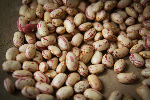 Rancho Gordo Cooking Dried Heirloom Cranberry Beans with Garam Masala Recipe