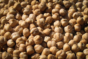 Garbanzo Bean (Chickpea), Rancho Gordo - Heirloom beans