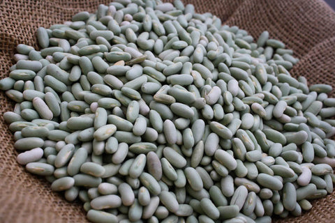 Flageolet, a small white to pale celadon green bean, Rancho Gordo - Heirloom beans