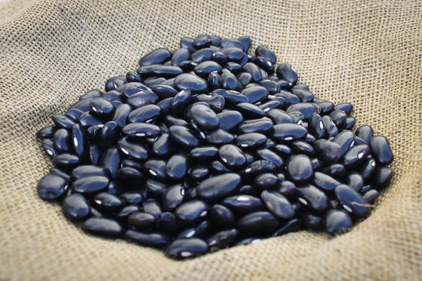 Dried Ayocote Negro beans-Rancho Gordo, Heirloom beans.