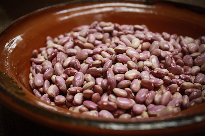 Flor de Junio Bean , Heirloom Bean - Rancho Gordo, Rancho Gordo  - 1