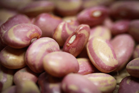 Flor de Junio Bean , Heirloom Bean - Rancho Gordo, Rancho Gordo  - 2