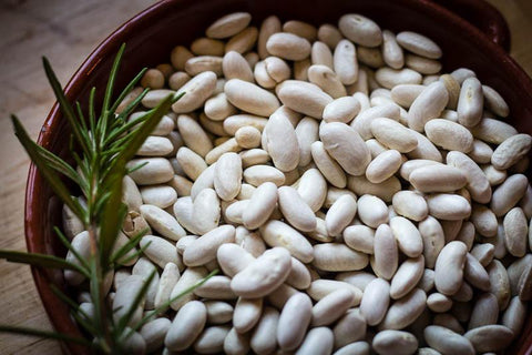 Marcella, a medium size oval shaped white bean - Rancho Gordo, Heirloom beans