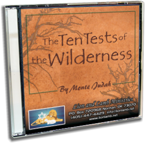 Ten Tests of the Wilderness