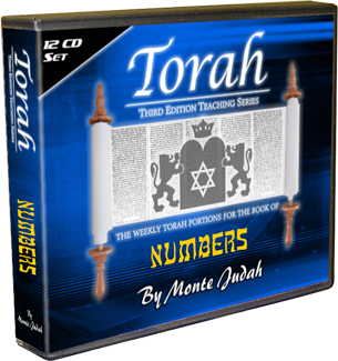 Torah Set - Third Edition - Numbers