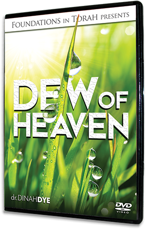 Dew of Heaven DVD