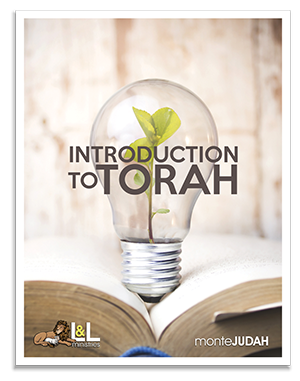 Introduction To Torah - Study Guide Only - New Look!