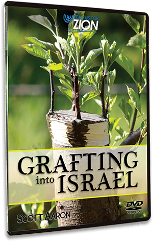 Grafting Into Israel