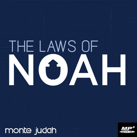 The Laws of Noah  (Digital Download MP3)