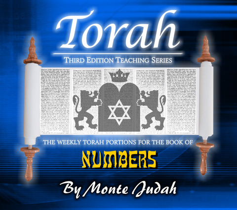 "Torah Portions Book of Numbers ""Digital Download"""