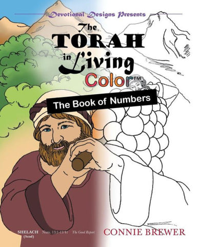 The Torah in Living Color - Numbers