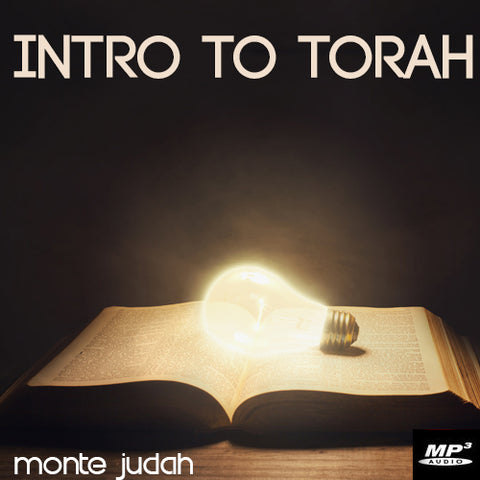 Intro to Torah Part 1  (Digital Download MP3)
