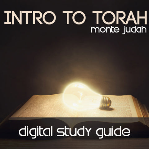 Intro to Torah Digital Study Guide  (Digital Download PDF)
