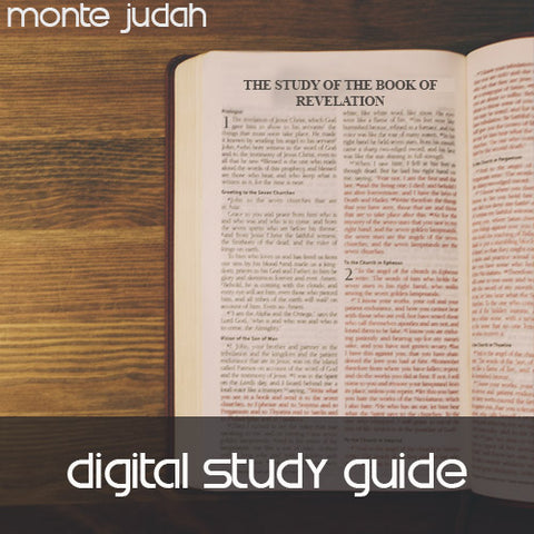 The Study of the Book of Revelation Study Guide Only  (Digital Download PDF)