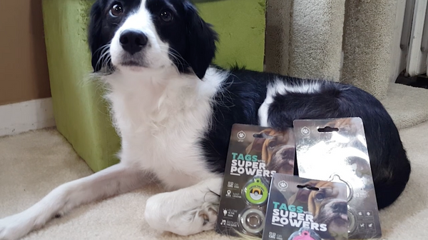 [REVIEW] Dog Tags With Superpowers