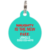 Aqua Naughty Is The New Nice Funny Dog ID Tag for Pets