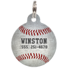 Vintage Baseball Sports Dog ID Tag for Pets