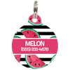 Pink Watermelons Personalized Dog ID Tag for Pets