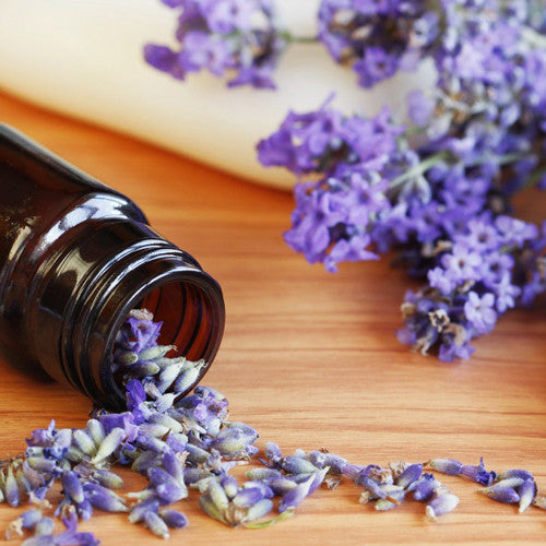 Pure Organic Lavender Essential Oil - Imported From France - Sweet Essentials