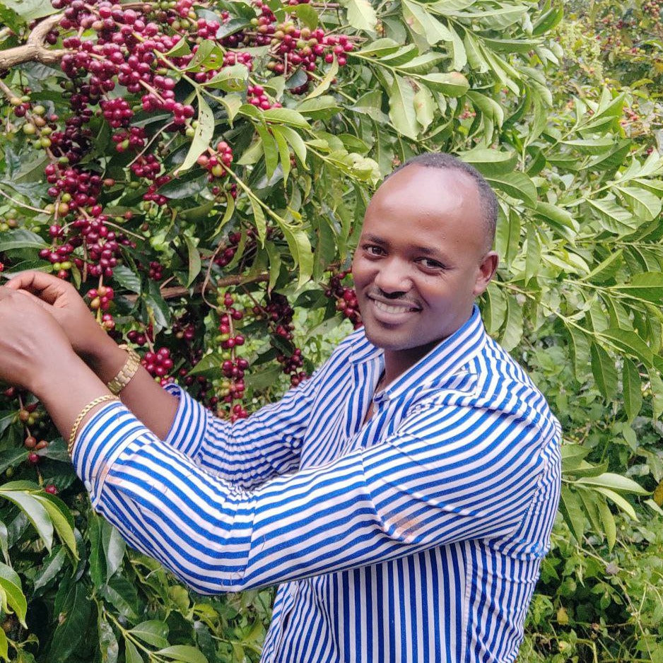 Ethiopia | Gemeda Elias Dube (Cup Of Excellence)