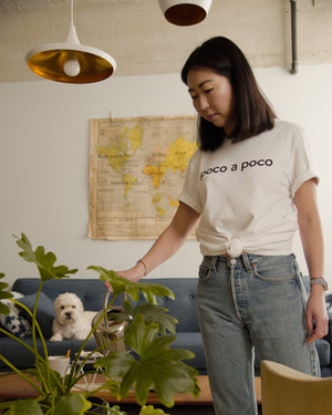 Poco a Poco (Little by Little) T-shirt