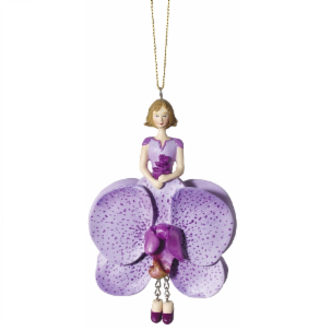 Phalaenopsis  Orchid Flower Maiden