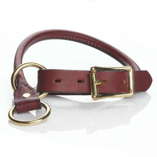 Leather Training Dog Collar