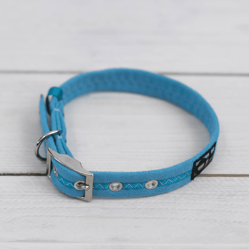 Oscar & Hooch Dog Collars – Signature Range