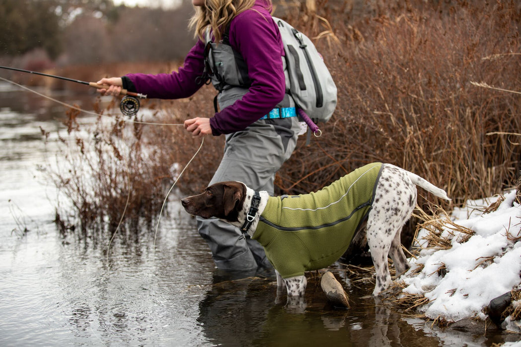 Ruffwear Climate Changer Jacket with FREE Mendota snap lead