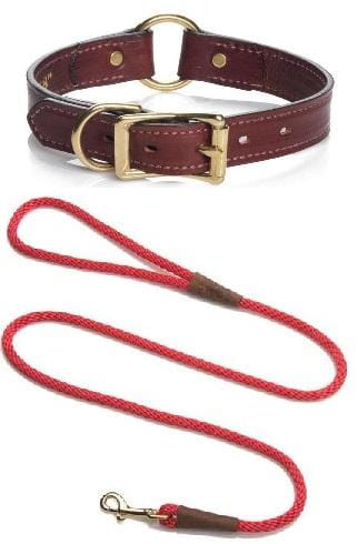 Christmas Gifts - Leather Wide Hunt Collar Set