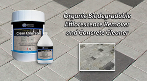 Elephant Armor Clean Concrete
