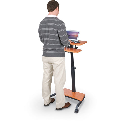 Mobile Adjustable Sit and Stand Desk