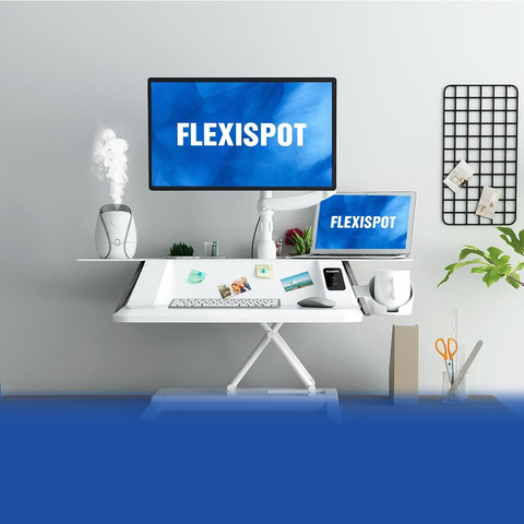 Flexispot: Stylish Electric Sit-Stand Workstation EM6W