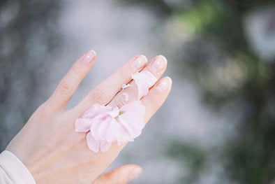 Flower petals on back of hand