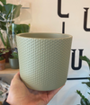 Era Pot - Light Green - 15cm