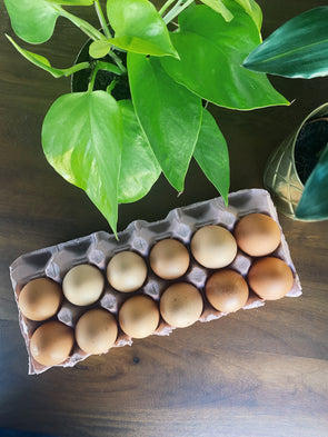 A Dozen medium free range eggs - the Good Egg Company
