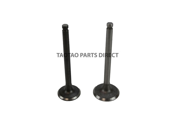 110cc Intake and Exhaust Valve Set - TaoTaoPartsDirect.com