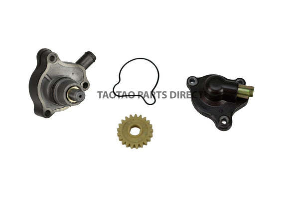 300cc Water Pump Assembly - TaoTao Parts Direct