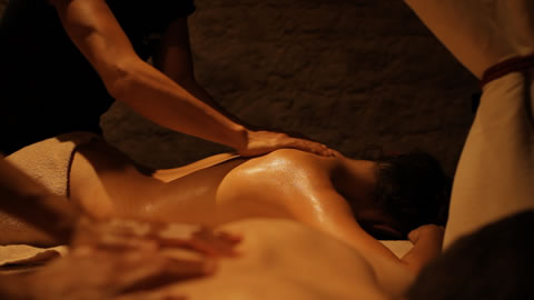 Massages Duo – Spa Arbre à Sens Paris