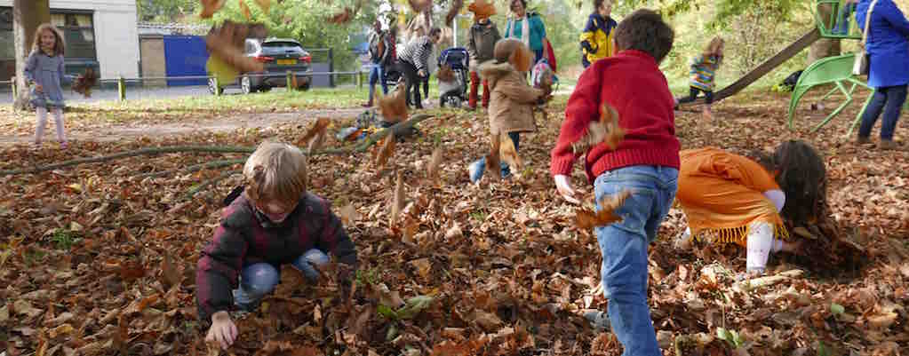 Half Term, Autumn Leaves & Wild Walks