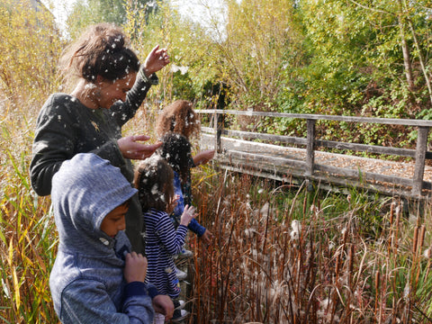 mile end park bulrush reeds wild walk outdoor people