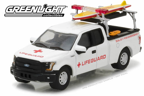 2016 Ford F-150 with Lifeguard Accessories