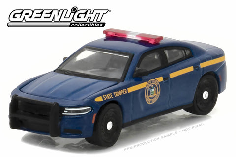 2016 Dodge Charger Pursuit / New York State